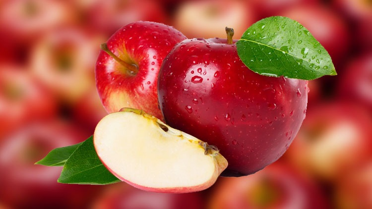 محصول سیب