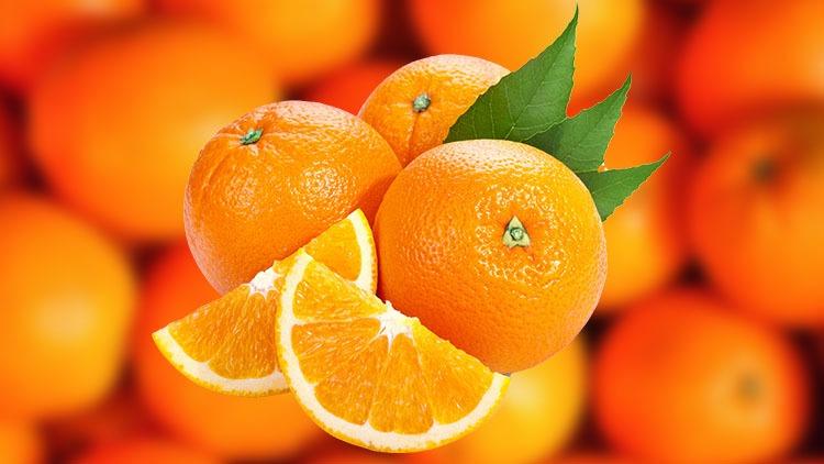 محصول پرتقال